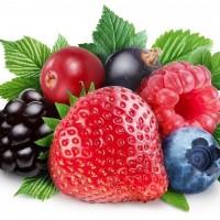 Ягоды фрукты овощи грибы крупный опт