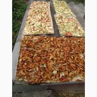 Купим сушку яблочную грушевую и др от населения урожая 2019