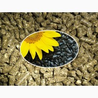 Шрот подсолнечный, Зерновые, Мука || Купить Украинского происхождения