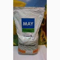 Семена гибрида Армада Clearfield (May Agro Seed) (Турция)