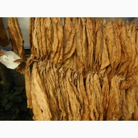 Продам табак листовой сигарный