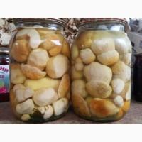 Придам білі гриби: мариновані, сушені