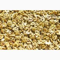 Закупаем на постоянной основе орех грецкий чищеный, средний, пшеничного цвета