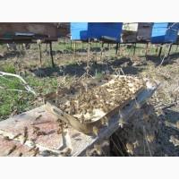 Соевая мука - бесценный протеиновый источник