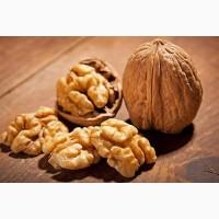 Куплю орех грецкий нового урожая