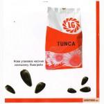 Семена подсолнечника Limagrain (Лимагрейн)