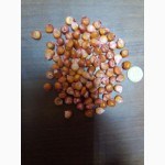 Гибрид кукурузы Кремень 200 МВ от производителя