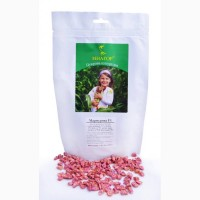 Солодка кукурудза середньостигла Мармурова F1, биколор, Мнагор Sh2, 24% цукрів