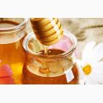 Куплю мед