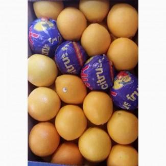 Апельсин оптом с Турции