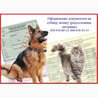 Оформление документов на собаку, кошку (родословная, метрика), Харьков