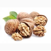 Продам бойный целый орех подсушенный по Лучшей цене сезона. Урожай 2018