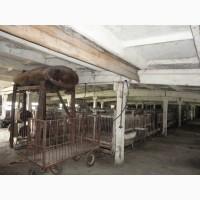 Оренда приміщення, свинокомплекса, ферми