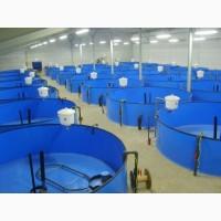 Нерестовики для разведения рыбы, раков, криветки