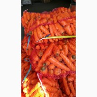 Продам морковь мытую 2 сорт оптом