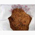 Табак сорт Бэрли, Тернопольский, Вирджиния