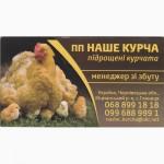 Підрощені курчата бройлер птиця
