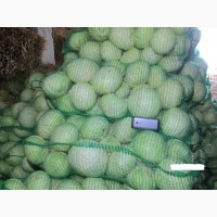 Продам капусту пізніх сортів