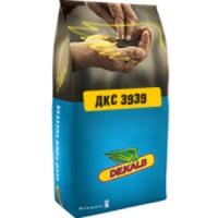 Насіння кукурудзи ДКС3939