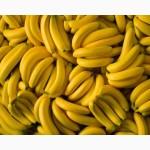 Продам газированные бананы сорта Cavendish 1box-16.5$