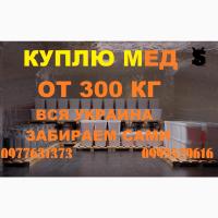 Закупка мёда в ДНЕПРОПЕТРОВСКОЙ И ХАРЬКОВСКОЙ области от 500 кг