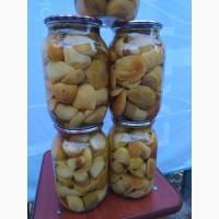 Продам білі гриби, мариновані