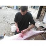 Послуги кастрації свинок