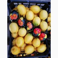 Продам лимоны свежие Турция. Купить лимоны Киев