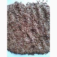 Продаем семена льна