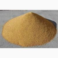 Продам барду сухую кукурузную послеспиртовую / барда суха кукурудзяна післяспиртова DDGS