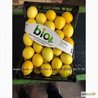 Лимоны оптом (Турция). Лучшее предложение в Украине. Звоните