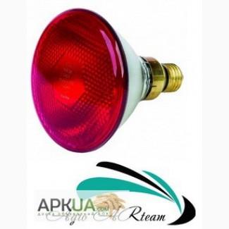 Инфракрасная лампа для обогрева 175 Вт красная PAR (Польша)