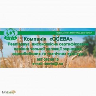 Компанія Осева реалізує насіння сої Моравія, Богеміанс