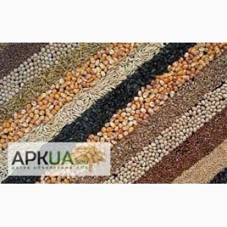 Закупаем пшеницу, рапс, кукурузу, сою и др зерновые культуры по Винницкой об