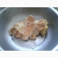Продам гриб латипурус (трутовик серно-желтий) мороженний 2019 г сбора