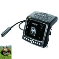УЗИ аппарат КХ 5200 для скотоводства