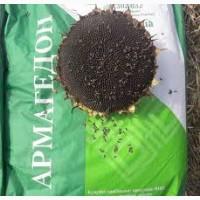 Семена подсолнечника Армагеддон