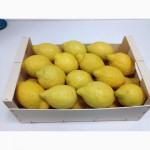 Продаем лимоны. Прямые поставки из Испании