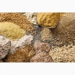 Продам отход зерна. Пшеница, ячмень, кукуруза, горох, гречиха. На постоянной основе