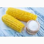Производим приём Кукурузы по всей Украине