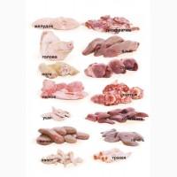 Субпродукты 1 и 2 кат говяжьи