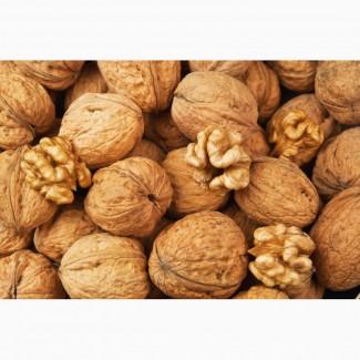 Продам целый грецкий орех 4 тонны НА БОЙ 2019 г