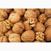 Продам целый грецкий орех 4 тонны 2019 г