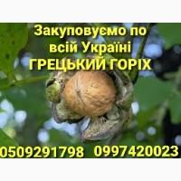 На постійній основі закуповуємо будь-які об`єми грецького горіха, Полтавская обл
