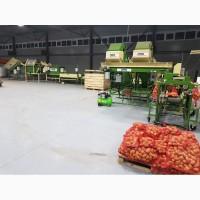 Мойка овощей, полировка овощей, сухая чистка овощей, сортировка овощей, фасовка овощей