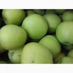 Яблука Флоріна 5 грн