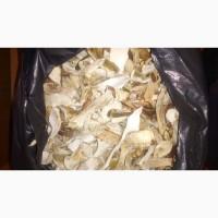 Продам белые грибы сушеные.Продам білі гриби сушені
