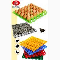 Пластиковый лоток для куриных яиц, лотки для яиц, лоток для гусиных яиц, Київ