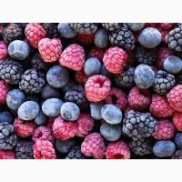Услуги шоковой заморозке ягод, овощей и фруктов