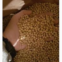 Семена сои ABEE, канадский трансгенный сорт